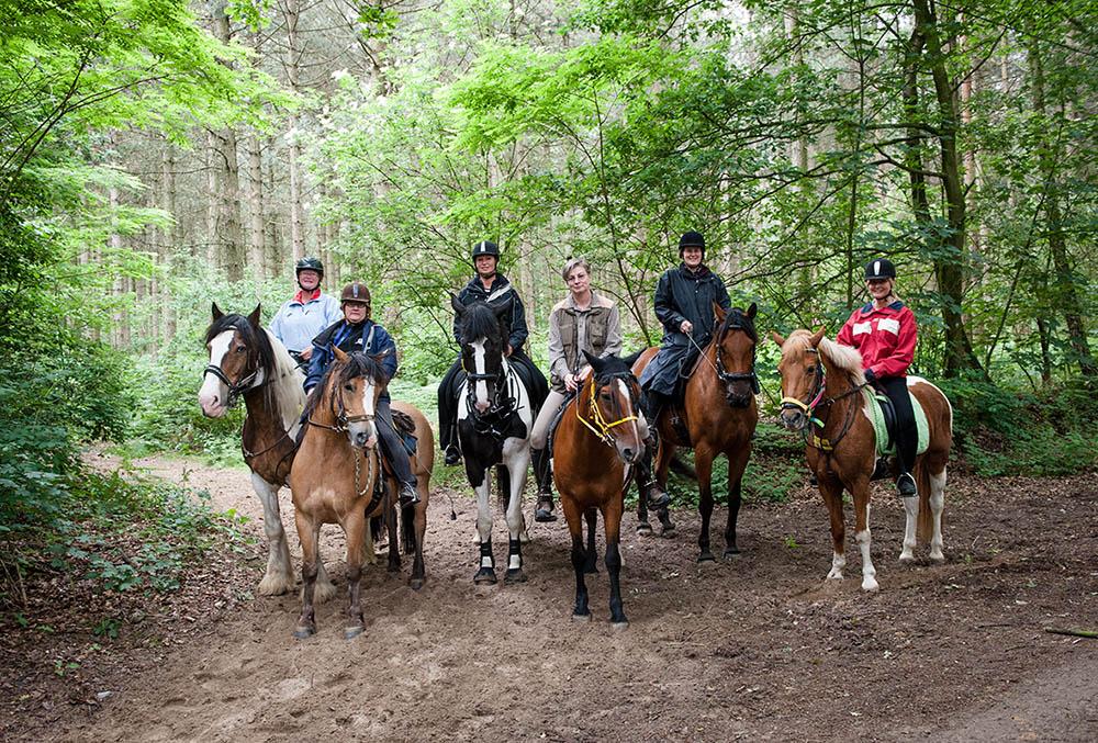 Wandern mit Pferd unter Leitung von Margit Koch-Entrop