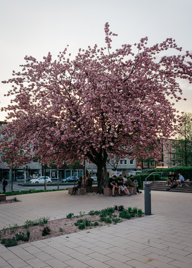 Tana-Schanzara-Platz, Bochum
