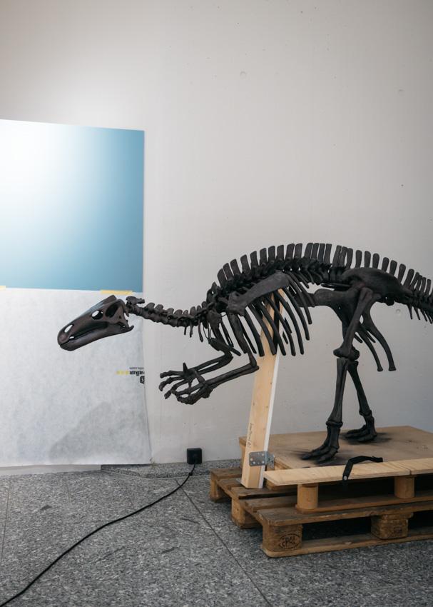 Umbau Naturmuseum Dortmund